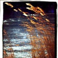Лед и пламя :: Nina Streapan