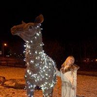 Немного меня)  и зимы.. :: Юлия Маслова