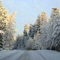 Красивая,опасная дорога... :: Михаил Лобов (drakonmick)