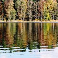 Осень рисует свои акварели :: Swetlana V
