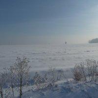 Туманная даль :: Галина