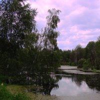 Лето, озеро :: Damir Si