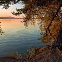 На осеннем закате :: Denis Aksenov