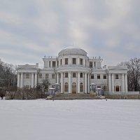 Елагинский дворец :: Наталья Левина