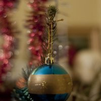 С Новым Годом и с Рождеством ! :: Ольга Винницкая (Olenka)