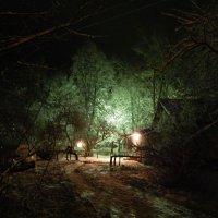 Волшебный свет в Новогоднюю ночь :: Максим Есменов