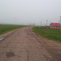 Туманная дорога :: Владимир Ростовский