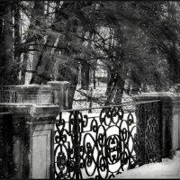 старый сад :: sv.kaschuk