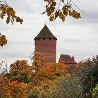 Замок. Сигулда :: Gennadiy Karasev