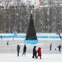 Зимний пейзаж с конькобежцами. (Подражание голландцам.) :: Галина