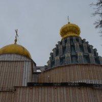 Так  было  в  феврале 2012  года... :: Galina Leskova