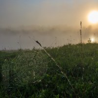Солнце взошло :: Валентин Котляров