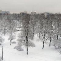 пейзаж :: Валентина Папилова