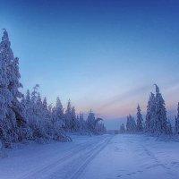 Зимний рассвет :: Сергей Бутко