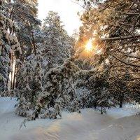 И этот зимний день угаснет... :: Лесо-Вед (Баранов)