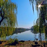 У озера :: Петр Заровнев