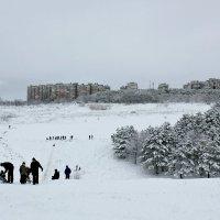Зима в Крыму бывает снежной) :: Татьяна Мартенюк