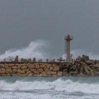 storm :: Павел Коротун