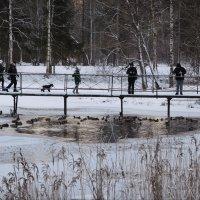 зима :: sv.kaschuk
