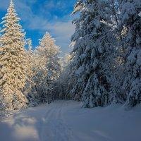Уральская зима :: vladimir Bormotov