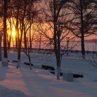 зимний закат :: Ирина ***