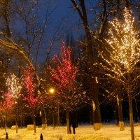 Зима,вечер в городе... :: Тамара (st.tamara)