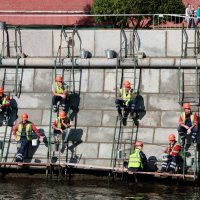 Птичий базар у Кремлёвской стены :: Андрей Синявин