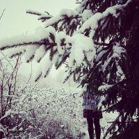 Мое любимое фото) :: Vika Borisova