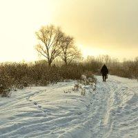 Зимняя дорога к Уралу. Оренбург. :: Артемий Кошелев
