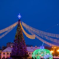 елка в г. Гродно, Беларусь :: Andrei Naronski