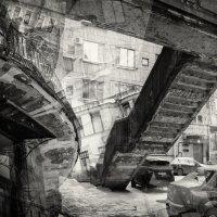 Питерские впечатления 2 :: Evgeny Kornienko