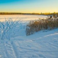Озеро Лебяжье.Зима. :: Виктор Евстратов