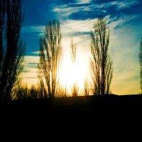 заход солнца :: Tanya Borokhta