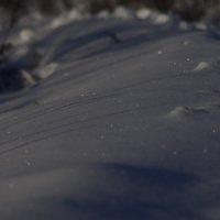 снежный покров :: Svetlana AS