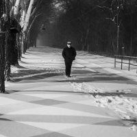 Линии :: Oleg Bugajew