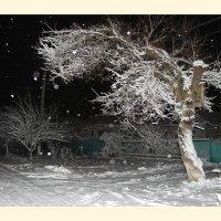 Волшебница зима :: Ольга Ламзина