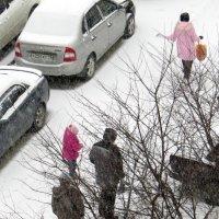 Снег идёт :: Валерий Дворников
