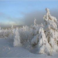 Зимняя симфония :: Владимир Тюменцев