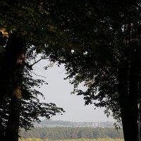 Осень :: Сергей Трусов