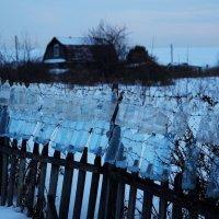 Пласт-забор :: Евгения Каравашкина