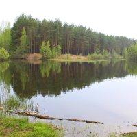 Озеро :: Валентина