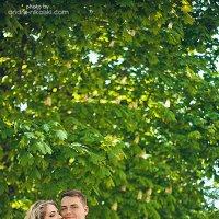 love :: Andre Nikolski