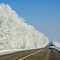 Сибирская зима :: Олег Мартоник