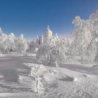 Зимний сад :: Владимир Чуприков