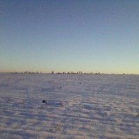 Зимнее поле :: Миша Любчик
