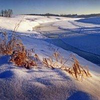 Зимний день 4 :: Валерий Талашов