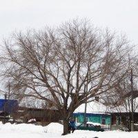 Уличный интерьер . :: Мила Бовкун