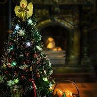 В один из рождественских вечеров :: Ирина Приходько