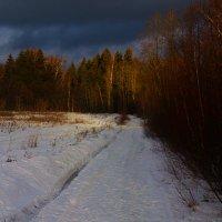 Выглянуло солнце! :: Григорий Кучушев