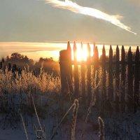 Присело солнце на забор :: Павлова Татьяна Павлова